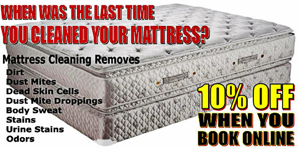 Mattress In Professional Cleaning Equipment Hot Amp